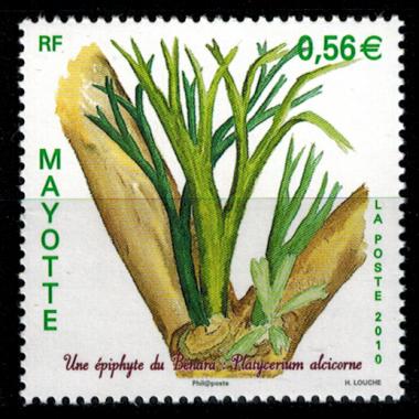 Mayotte N° 236 Neuf **